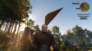 Witcher3GlitchHead