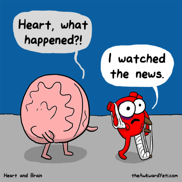 heart-brain-news
